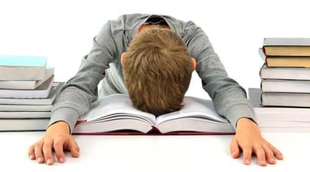 How to Maintain Work with Studying